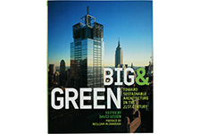 Big and Green Book thumbnail